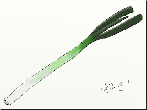 長ネギ描けました。ねぎ