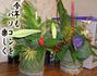 教室の花(お正月)
