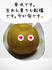 千葉の梨はおいしいよ^^