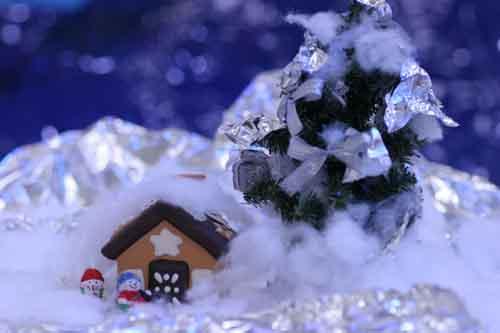 2007年12月のピックアップ写真